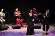 Punto Flamenco Ensemble